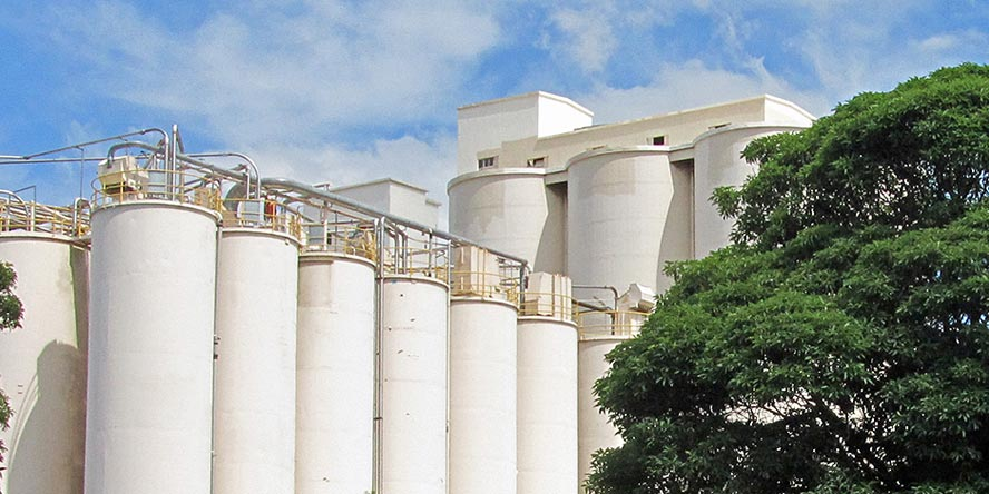 Risk assessment for the flour receiving, storage and transport system